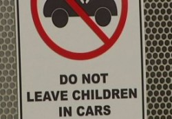 Children cannot be left in cars