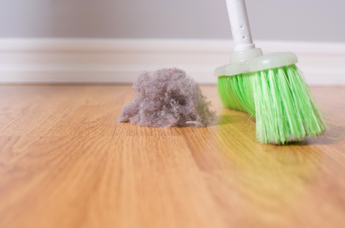 Protect Allergy-Prone Kids From Household Dust Mites