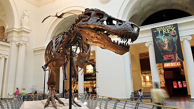 Museums for kids who love dinosaurs