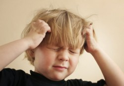 Head Lice Growing Resistant to Standard Meds