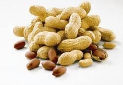 Все больше детей страдают аллергией на арахис