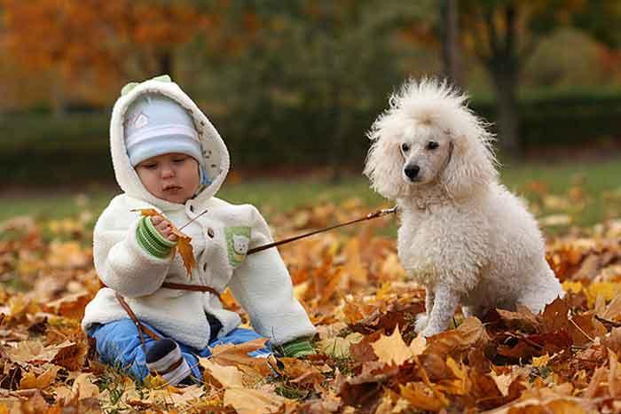 Как правильно одевать ребенка для прогулок