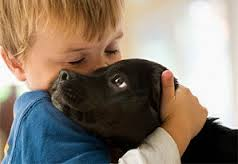 Как приучить собаку и ребенка к совместному проживанию