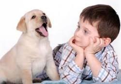 Домашние животные и ваши дети