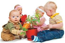 Как научить детей ухаживать за комнатными растениями