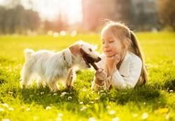 Дети и животные: такой важный друг