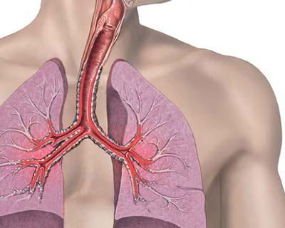 Проблемы ранней диагностики бронхиальной астмы у детей раннего и дошкольного возраста