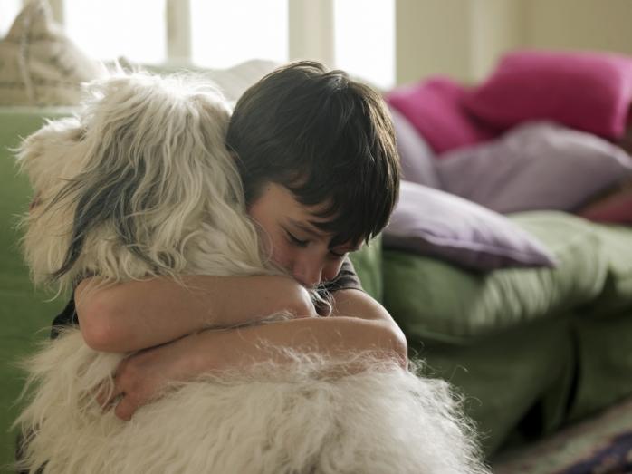 Купите мне собаку: как сказать «нет» ребенку?