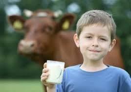 Каждому ребенку нужно как минимум две чашки молока в день