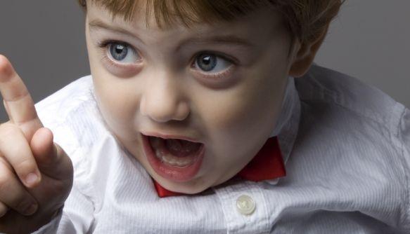 Кто в доме хозяин: воспитывают дети