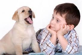 Домашнее животное помогает в интеллектуальном развитии ребенка