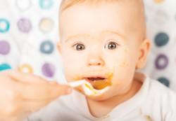 Овощные, ягодные и фруктовые пюре для ребенка до года