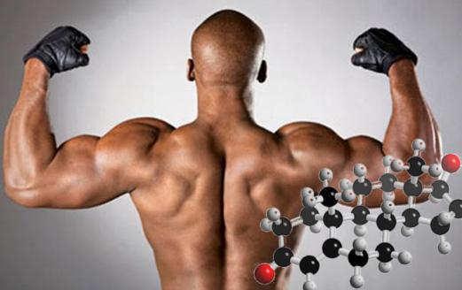О необходимости натурального тестостерона