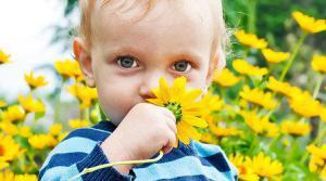 Детское пюре в баночках: польза или вред
