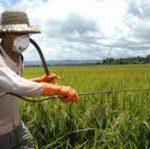 Пестициды увеличивают риск развития аутизма у детей