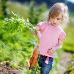 Развлечения на открытом воздухе - как занять детей летом