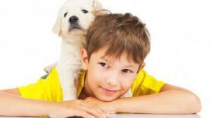 Собаки защищают психику детей