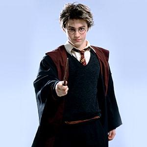 Опытный аниматор Гарри Поттер доставит радость на детском празднике