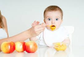 Признаки готовности к вводу прикорма