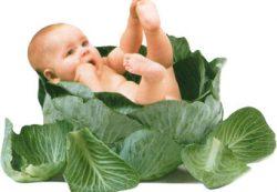 Вегетарианство для детей?