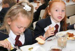 Школьное питание: пища для тела или пища для ума?
