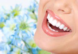 Услуги центра стоматологии «StomPark»