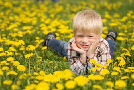 Поллиноз у детей — симптомы, влияние пыльцы растений, рекомендации специалиста