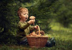 Грибы в детском питании: больше вреда или пользы?