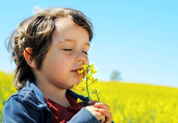 Если ваш ребёнок – кинестетик, как быть?