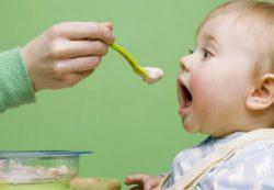 Как правильно вводить прикорм при грудном и искусственном вскармливании