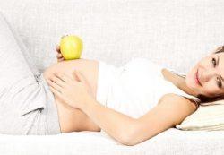 Развитие плода и необходимые анализы на 25 неделе беременности