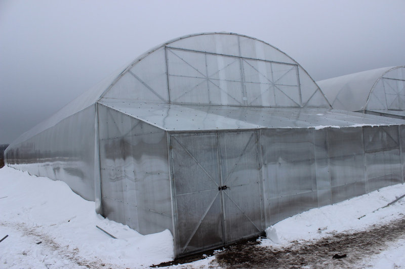 Фермерские теплицы — чуть больше чем теплицы