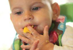 Как правильно вводить желток в прикорм грудничку
