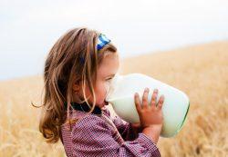 Фермерское молоко защитит детей от аллергии
