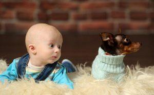 Насколько сильна привязанность детей к домашним питомцам?