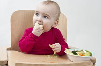 Как научить ребенка жевать кусочки пищи