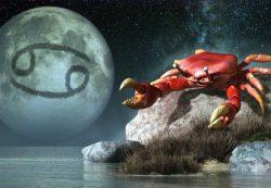 12 идей подарков на День рождения для водных знаков (Рак, Рыбы или Скорпион)