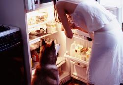 Как не подходить к холодильнику ночью?