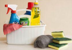 Чистота в доме своими руками