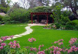 Садовый участок для любителей активного отдыха