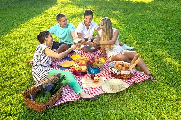 Устраиваем полезный пикник
