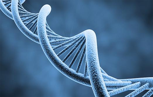 Что такое генетический тест?