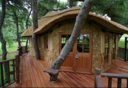 Дом на дереве: как сделать?