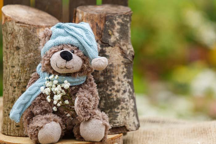 История одного игрушечного медвежонка Тедди из Киева