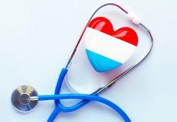Медицинский портал Yellmed: новости, информационные статьи и доступные клиники региона