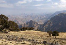 Туры в Эфиопию из Москвы с перелётом