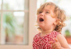 Как избежать истерики у ребенка в 2-3 года и что делать, если она началась