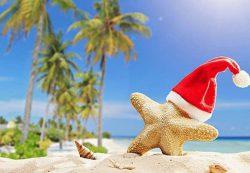 Как спланировать отдыха на Новый год: экзотические туры и популярные направления