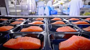 Назначение сертификация ISO 22000 при производстве пищевой продукции