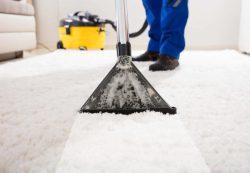 Ковер — важный элемент дизайна или пылесборник?
